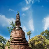 Ancient Ruins With Growing Trees Under Blue Sky. Ayutthaya, Thailand