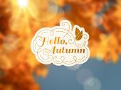 Autumn Background With Vintage Label And Sun Beam.