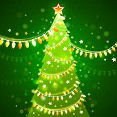 Christmas tree on a dark green background. vector