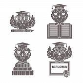 Owls in graduation caps set
