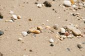 Small wetted pebbles