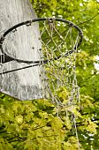 Old Basketball Net