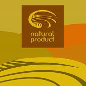 Logo, label. Green concept. Landscape with meadows. Agriculture. Wheat, rye, tea. Harvest