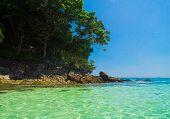 Idyllic Place Vacation Retreat