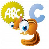 picture of chipmunks  - cute animal picture abc - JPG