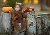 stock photo of baby bear  - Cute little baby girl in the suit of bear in an autumn park