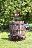 foto of wine-press  - Press for wine old and rusty in a grass field vertical image - JPG