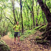 image of canary  - Man hiker hiking in green forest - JPG