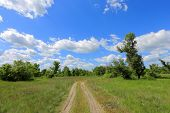 foto of steppes  - landscape with rural road across meadow in steppe - JPG