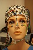A Beautiful Woman Manikin With Eeg Hat