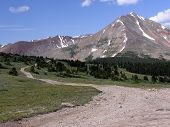 Mt. Guyot And Jeep Road