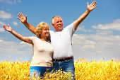 stock photo of elderly couple  - Smiling happy  elderly couple in love outdoor - JPG