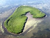 Own Island