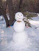 Kind wandte sich Schneemann