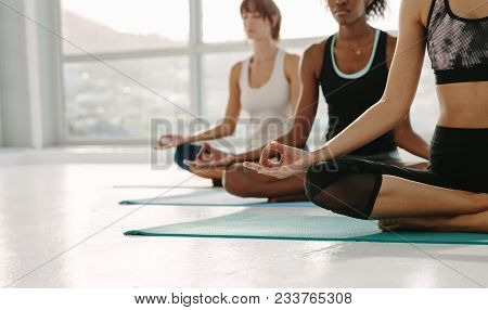 poster of Cropped Shot Of Fitness Women Practising Yoga, Sitting On Floor With Legs Crossed And Hands On Knees