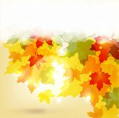 Autumn background with leaves and copy space for your text