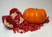 Pomegranate And Jack Be Little Pumpkin