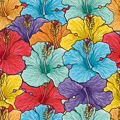 Tropical Flowers Seamless Pattern With Sketch Multicolor Hibiscus. Hand Drawn Vector Illustration Of poster
