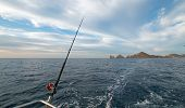 Fishing Rod On Charter Fishing Boat On The Sea Of Cortes / Gulf Of California Viewing Lands End At C poster