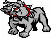 Cuerpo de la mascota de Bulldog