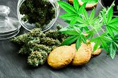Cookies With Cannabis And Buds Of Marijuana On The Table And Young Cannabis Plant. A Can Of Cannabis poster