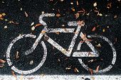 Bicycle Lane Or Path And White Bike Symbol. Bicycle Path And Autumn Fallen Leaf On Lane. Bike Lane O poster