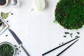 A plastic plate with green moss stands on a white wooden table and next to it are containers with dr poster