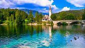 Idyllic nature scenery - Wonderful lake Bohinj in Slovenia, Triglav national park poster