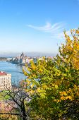 Autumn Skyline Of Budapest, Hungary With Fall Trees In The Foreground. Hungarian Parliament Building poster