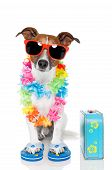 stock photo of comedy  - Tourist Dog With Hawaiian  Lei And A blue Bag - JPG