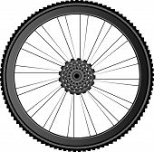 Fahrrad-Rad-Vektor-Illustration auf weiß