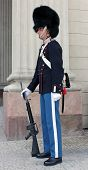 Royal Danish Guardsman