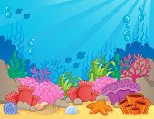 stock photo of biodiversity  - Coral reef theme image 4  - JPG
