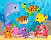 stock photo of octopus  - Coral reef theme image 5  - JPG