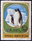 A stamp printed in Mongolia shows Adelie Penguin - Pygoscelis adeliae