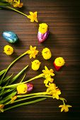 Easter Eggs and Chicks with Flowers on Wood Background