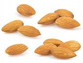 almond nut isolated on white background