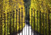 foto of wrought iron  - A closed wrought iron gate protects the entrance to an exclusive estate.