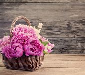 Peony On Wooden Background