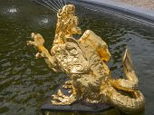 Golden Dragon In Fountain