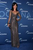 LOS ANGELES - OCT 30:  Perrey Reeves at the Oceana's Partners Awards Gala 2013 at Beverly Wilshire H