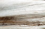 Light Wood Texture Background
