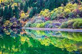 Profusion Of Autumn Color On The Lake