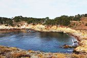 Rocky Pacific coast in the Reserve Point Lobos. Multicolored moss reflected in the calm water a smal