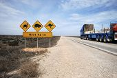 Road Train On The Eyre Highway