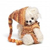 image of teddy  - Classic teddy bear - JPG