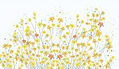 image of daffodils  - Floral banner with daffodil flowers cute design - JPG