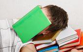 Teenager Sleeps With The Books