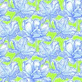 Vector pattern with field of peony flowers in bright color