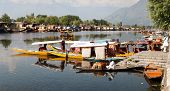 KASHMIR, INDIA - AUG 3 Shikara boats on Dal Lake with houseboats in Srinagar - Shikara is a small bo